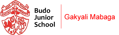 BUDO JUNIOR SCHOOL
